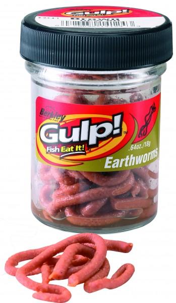 GULP! NATURAL SOFT BAIT ERDWURM BRAUN